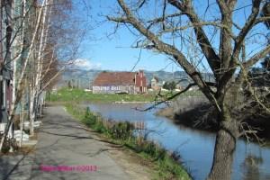 Petaluma River Townhouses
