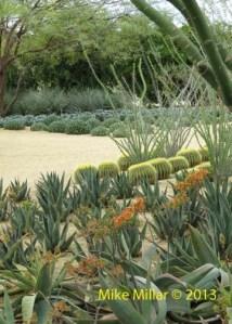 Palm Springs Modernism Week Annenberg Sunnylands Garden