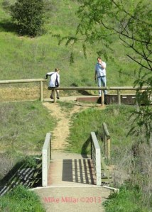 Healdsburg Ridge bridge