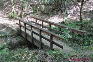 Creek Crossing Bridge