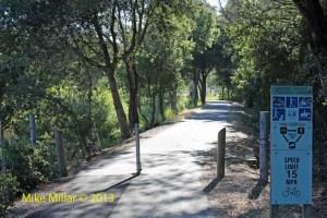 Colgan Creek Trail at Bellevue