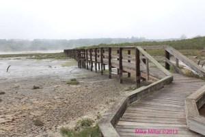 Kirby Park trail