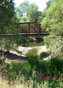 Peterson Creek Bridge at Santa Rosa Creek