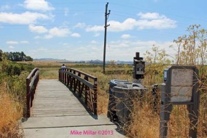 Trailhead Alman Marsh