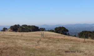 Taylor Mountain View SW
