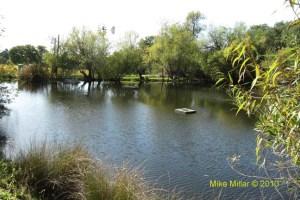 Bartholomew pond