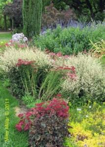 Winery Gardens KJ Flower Gardens