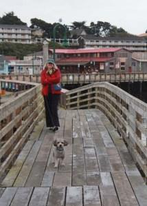 Bandon Pier Find Cole