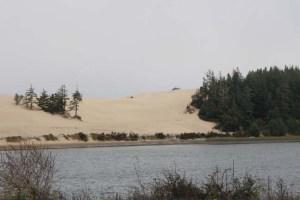 Horsfall Dunes