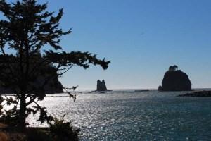 Quinault Ocean View