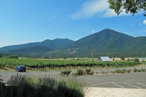Valley View Winery View