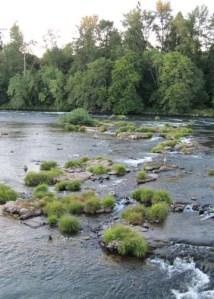 Willamette River Eugene Oregon