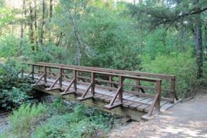 Zigler at S Fork Jackson Creek