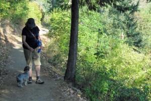 Zigler Trail Jacksonville