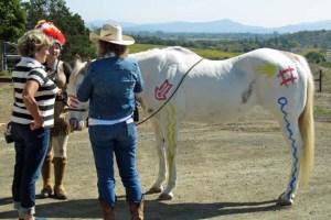 Shone Farm horse