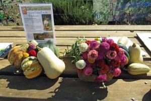 Shone Farm Produce