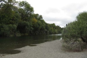 Steelhead Beach on Russian River
