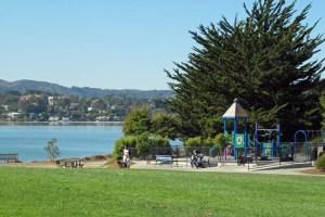 Tiburon Playground