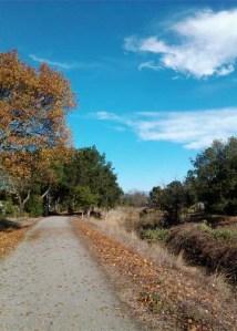 Colgan Creek Path