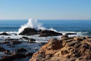 Salt Point waves view West