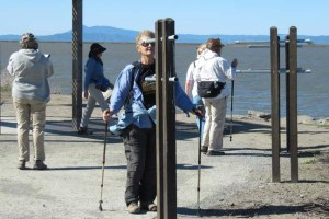 Bay Trail Napa sightscope