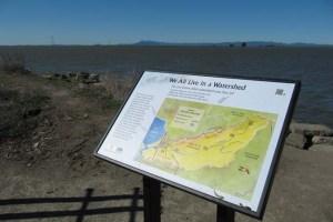 Bay Trail Napa River All Watershed