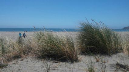Doran dunes