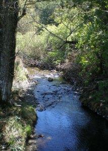 Sonoma Creek at Sugarloaf