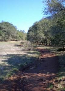 Sugarloaf Rocky trail