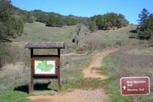 Trailhead Bald Mtn &n Meadow Trail
