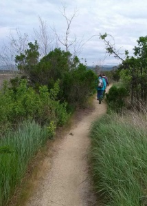 Side Trail N