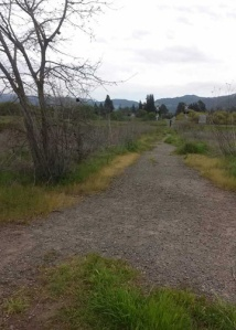 Side Trail to Napa C