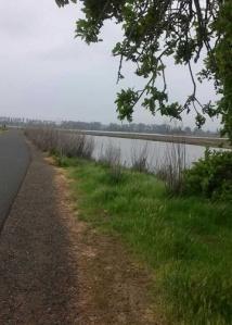 Trail south Napa River