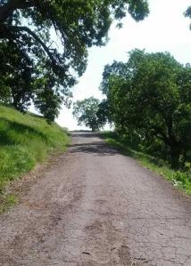 Paved uphill Hamilton
