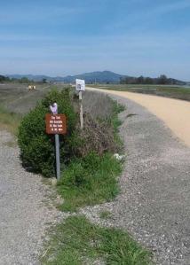 Path split Reservoir Hill to trail North