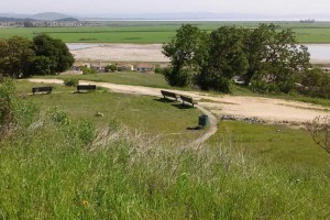 View to exReservoir & wetlands