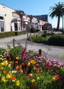Cannery Row park