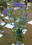 Fiesta Flower