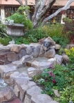 Carmel dog fountain