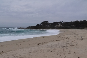 Carmel River Beach n
