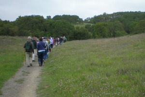 Foothill Trail