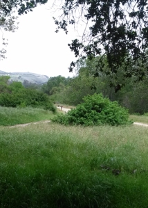 Garland bench view