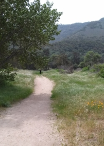 Garland trail