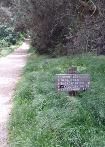 Garland trail id
