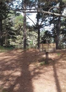 Jacks Peak Trail choice