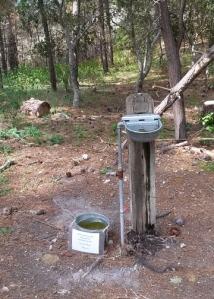 Jacks Peak horse and dog water