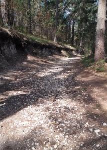 Jacks Peak Sandstone Path