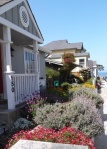 Pacific Grove homes