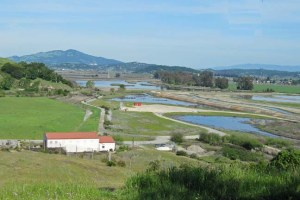 View to Bel Marin Keys
