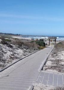 Asilomar Ocean or more dunes